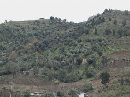 najafi-roodbar.2
