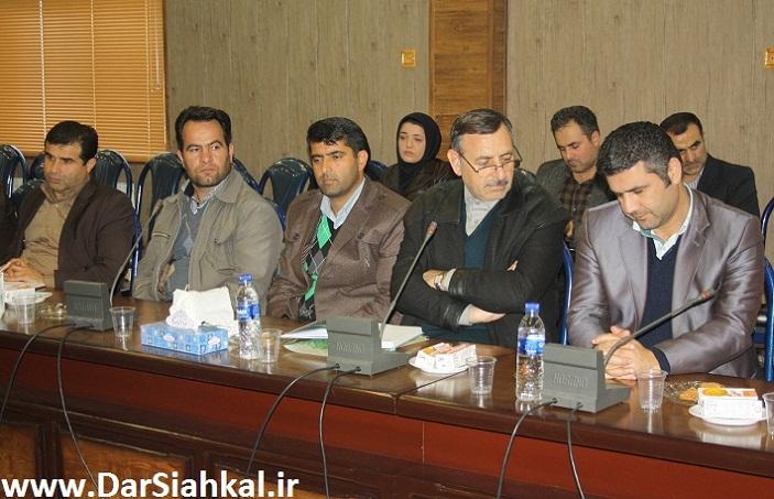 shoraye_edari_dar_siahkal-3