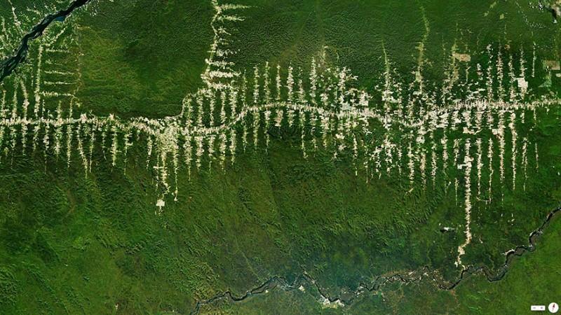 جنگل زدایی در ناحیه جنگلهای بارانی آمازون، پارا، برزیل عملیات جنگل زدایی در جنگلهای بارانی ناحیه پارا در برزیل که در جهت ساخت جادههای مرکزی ایالتی صورت گرفته است.