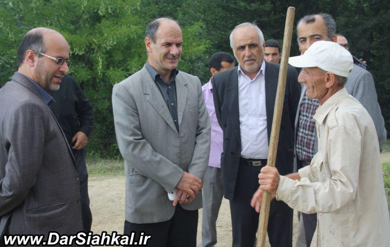 mazrae_berenj_dar_siahkal-2