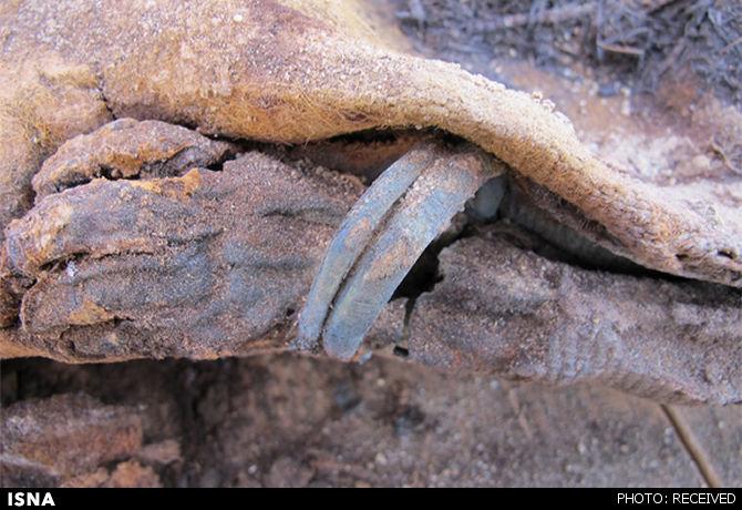 کشف قبرستانی با یک میلیون مومیایی